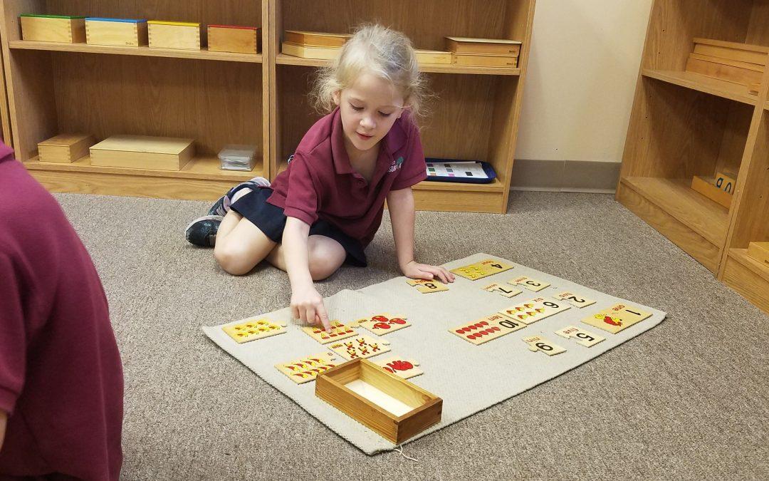 VPK (Voluntary Prekindergarten)